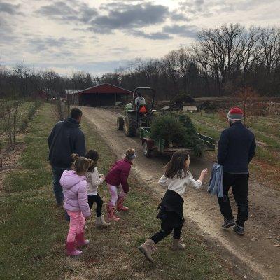 Kids picking Christmas tree